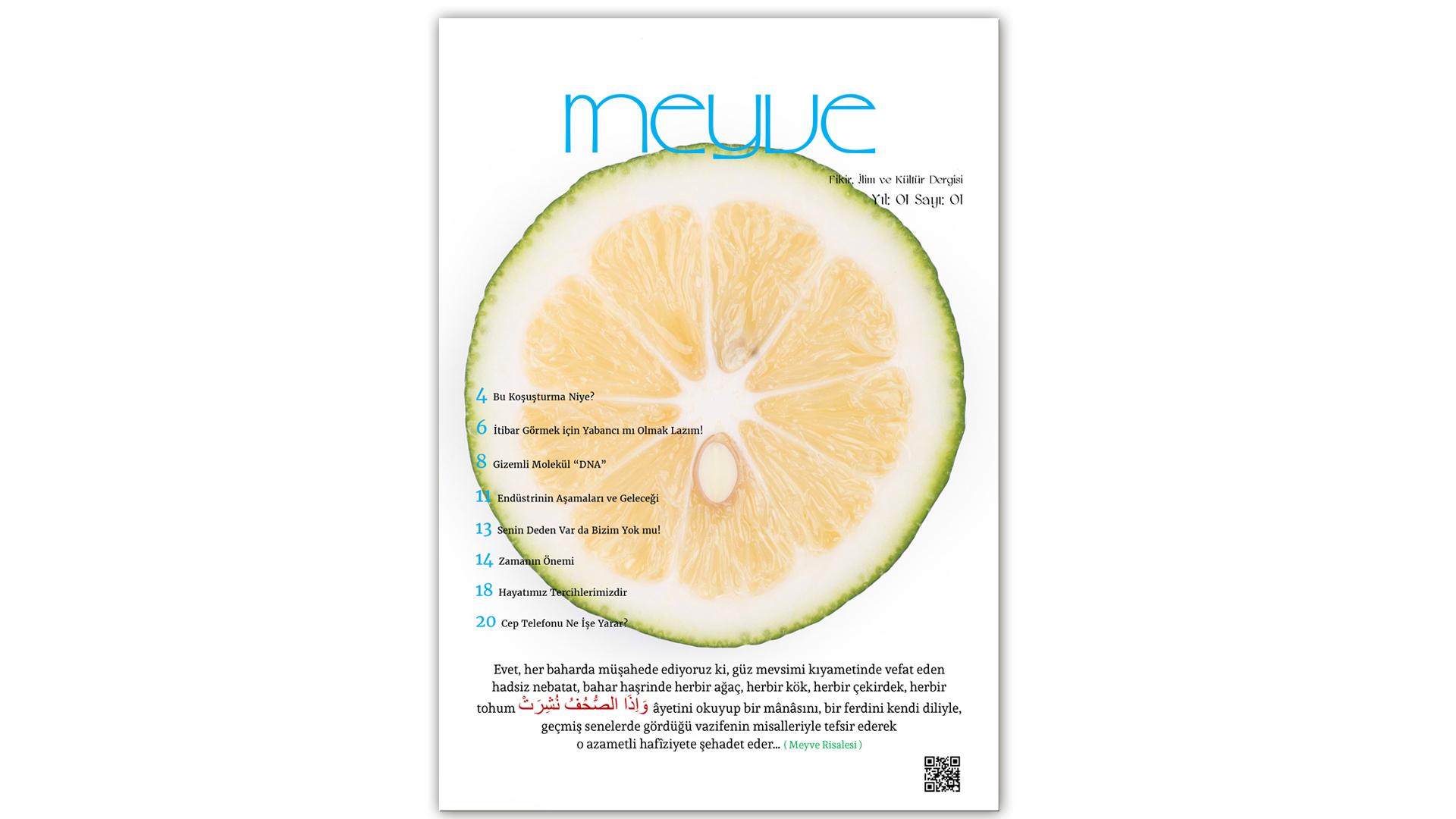 Meyve Dergisi 1.Sayı